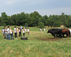 Group Farm Tours
