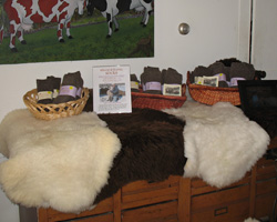 Lambskins of many colors and fleece length.