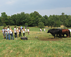 Group Farm Tours