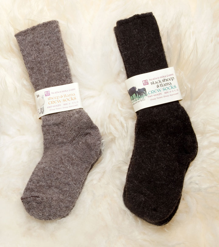 In-store Sock Sale!